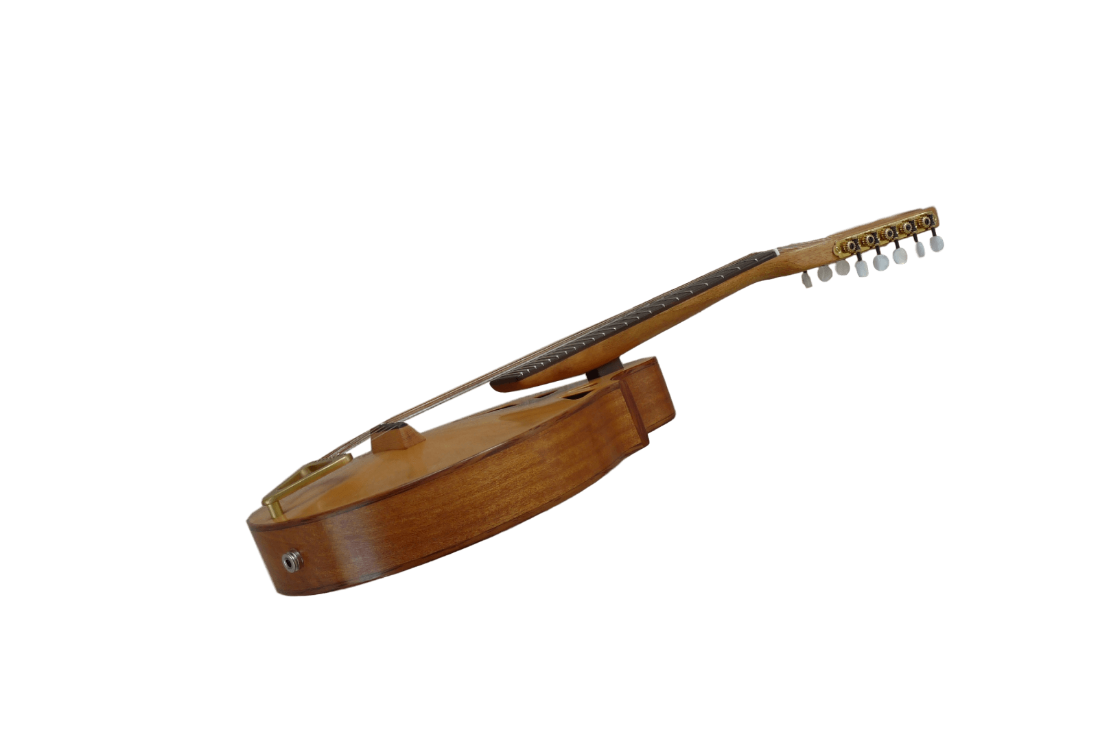 10-string mandolin