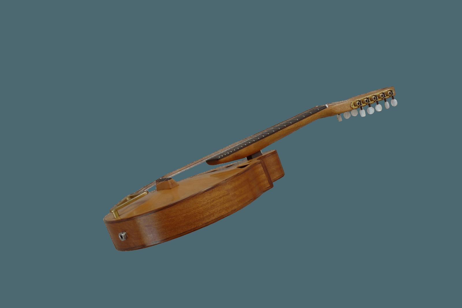 10-string mandolin