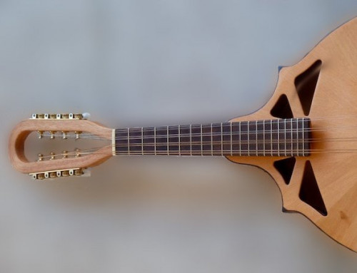 NEW ARRIVAL: RM-1 powerful Mandolin by Richard Morgan
