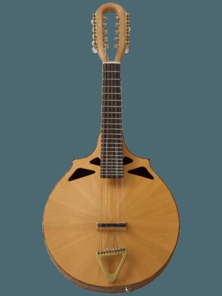 1-=string mandolin front