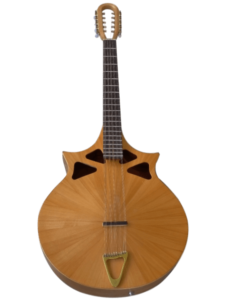 10 string cittern front