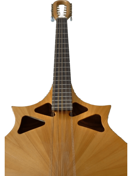10-string cittern close up