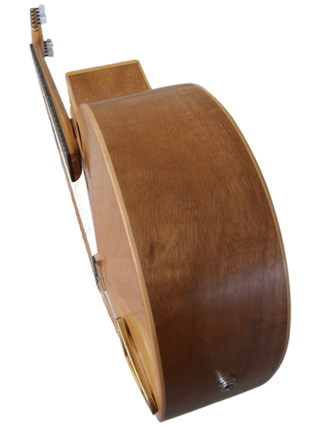 10-string cittern side back