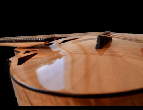 NEW ARRIVAL: 2016 RM-5 Richard Morgan octave mandolin