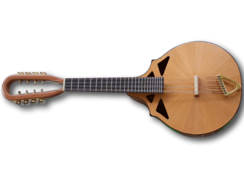 NEW ARRIVAL: 2016 RM-4 Richard Morgan lead mandolin