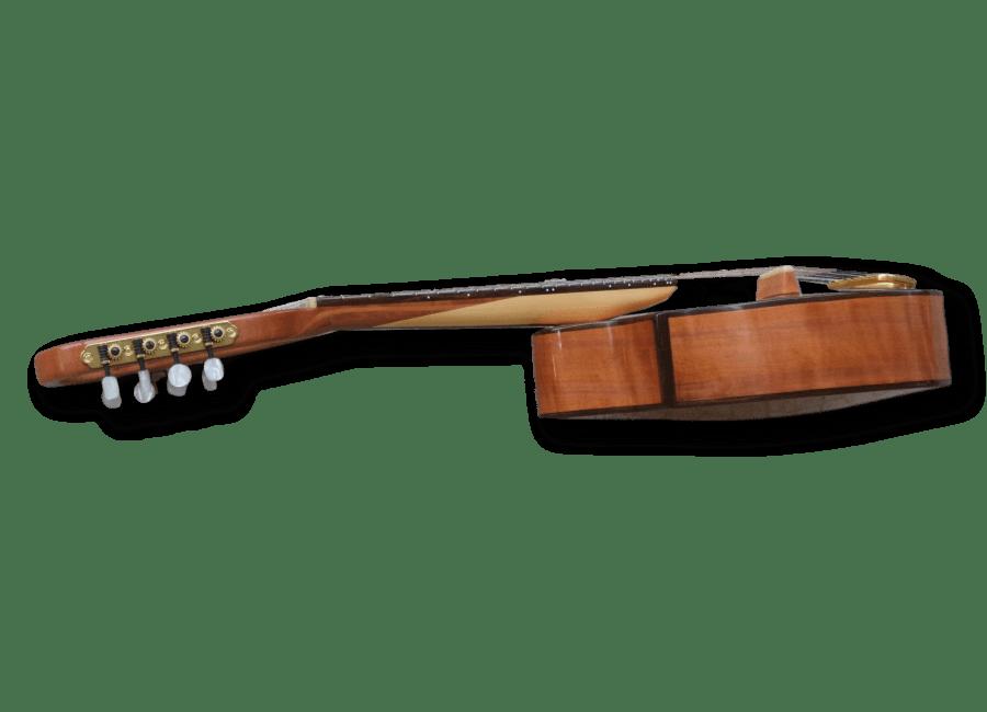 Richard Morgan Lead Mandolin