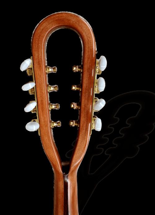 Richard Morgan Mandolin RM-M3 head